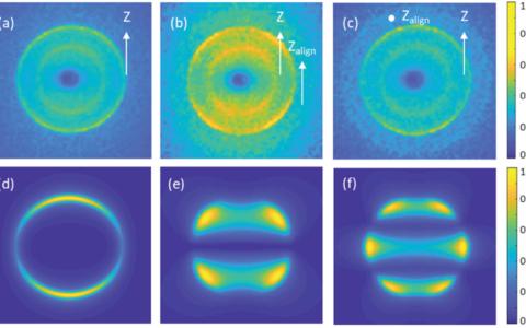 Photoelectron angular distributions from resonant two-photon ionisation of adiabatically aligned naphthalene and aniline molecules