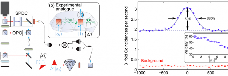 Phonon-Mediated Nonclassical Interference in Diamond